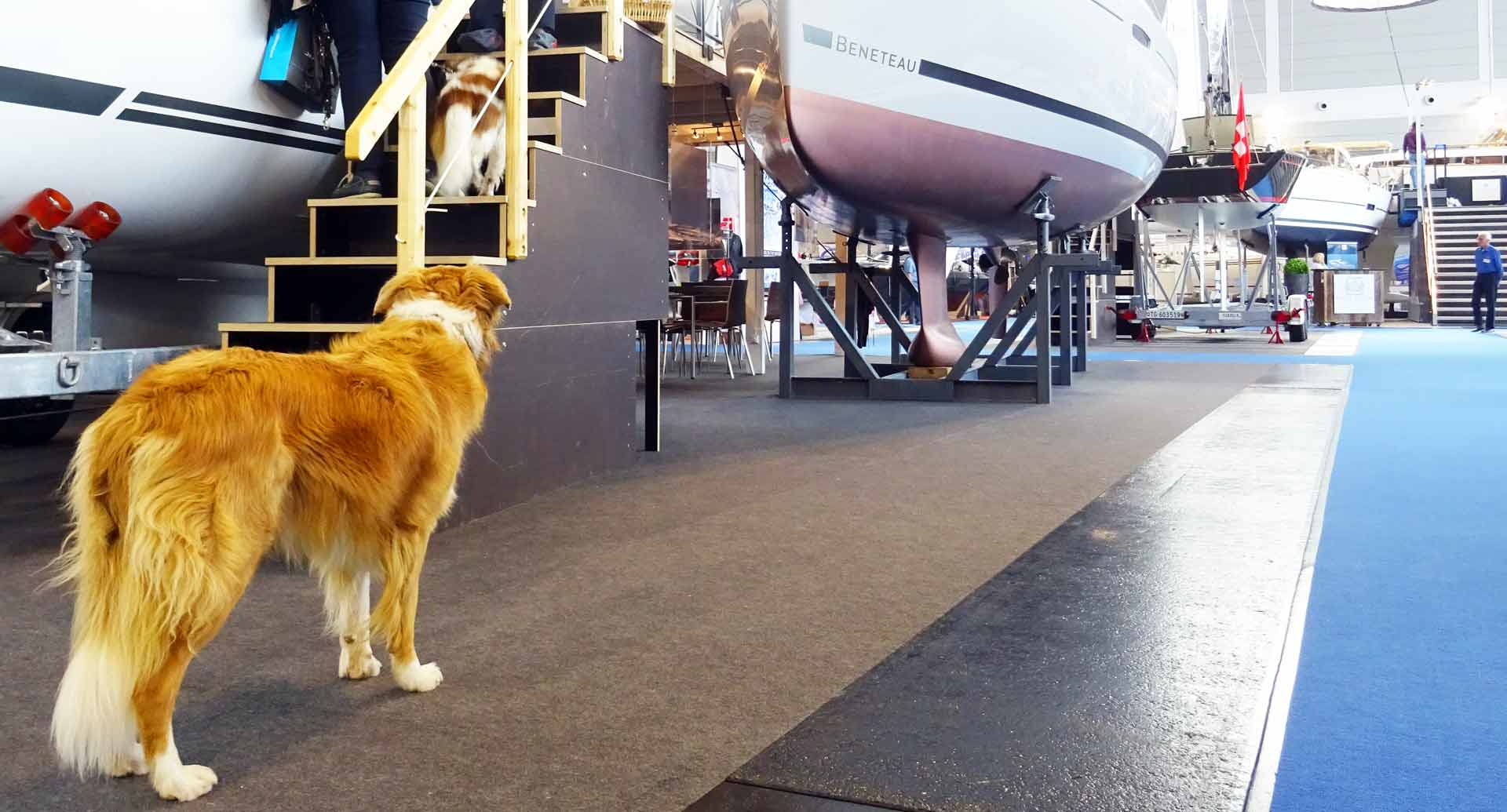 All kinds of Spectators have had their Fun at the Interboot Friedrichshafen